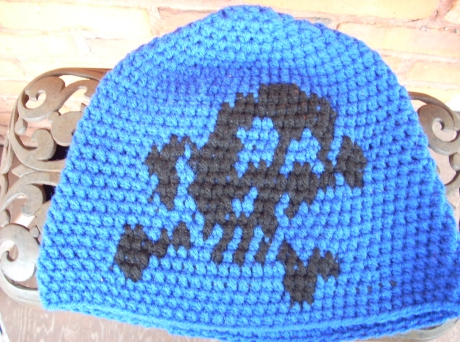 Crocheted Skull-n-Bones Cap In Blue and Black